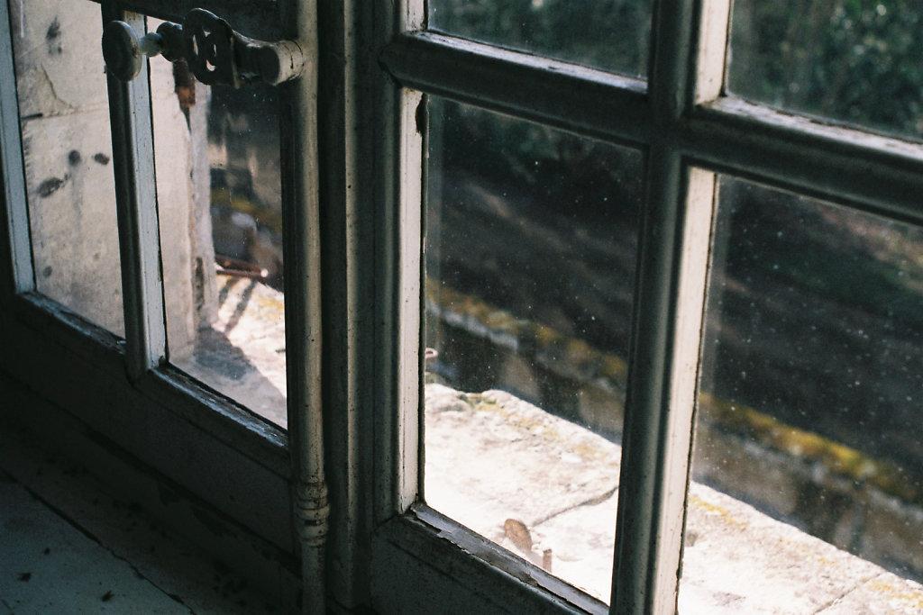 A travers la vitre III